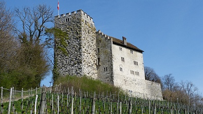 "Habsburg ""Rear Castle"" with the Large Tower"