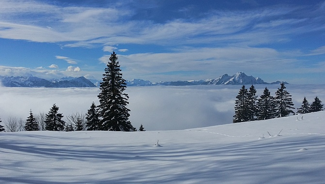 Rigi Panorama Trail from Kaltbad to Unterstetten