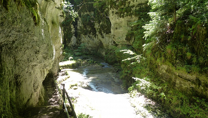 In the Twannbach Gorge