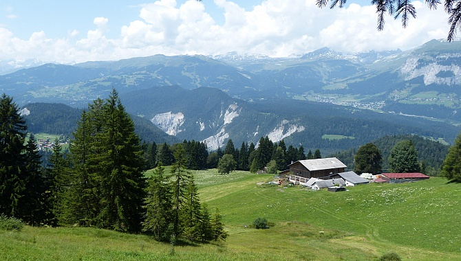 Prou Grond meadow with a view to the Rhine Canyon and Flims.