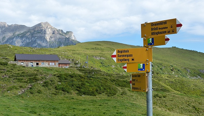 Junction of trail that goes over the Surenenpass. We go straight on to Alp Grat.