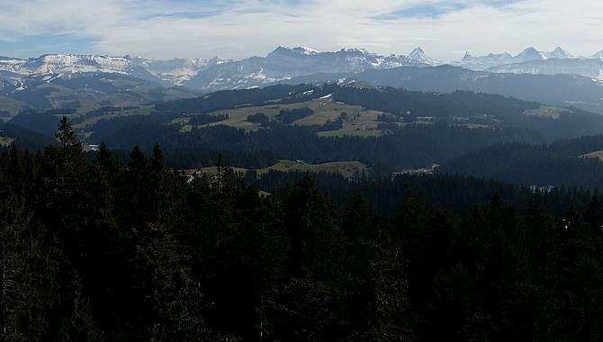 View of the Bernese Alps from the look-out tower.