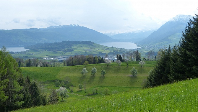 View South and Southeast from Rooterberg to Immensee, Lake Zug, Mount Rigi