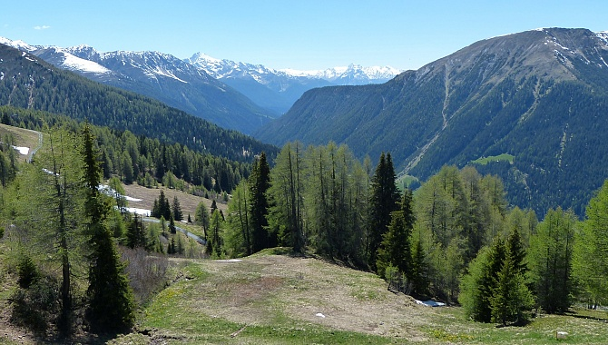 View into the Landwasser Valley as the trail heads South.