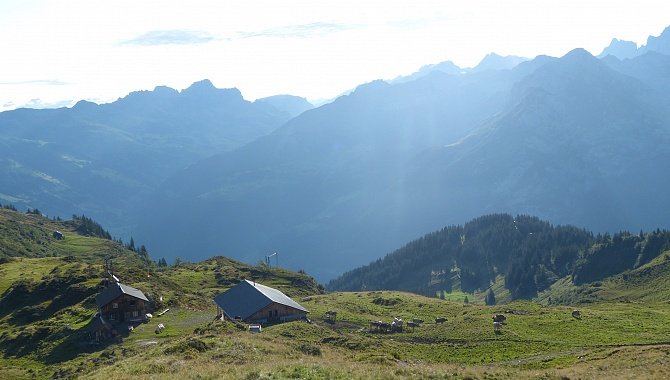 Morning view East into the Schächen Valley after ascending from Alp Grat