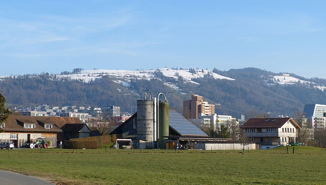 Freimann Farm in Zug Letzi, with Mount Zugerberg in the background