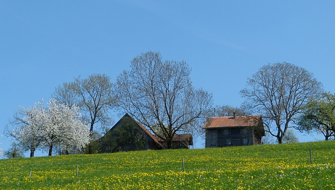 Many farmhouses on Mount Zugerberg.