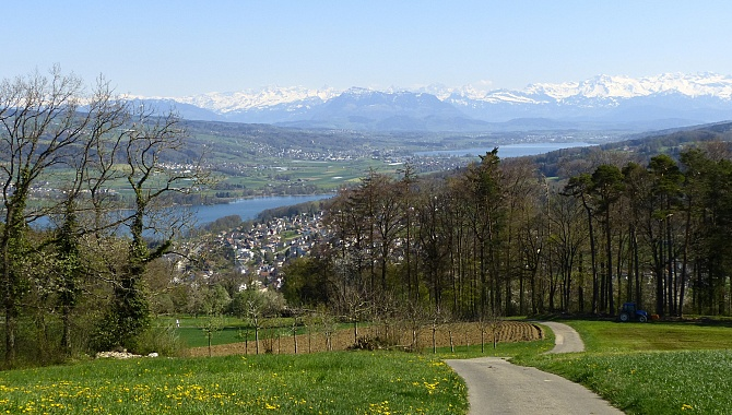 Descent to Beinwil a. See with the two Lakes: Hallwil and Baldegg
