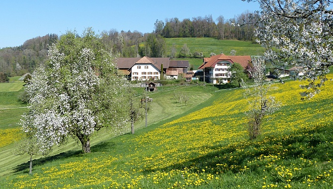 The farming landscape of Canton Aargau