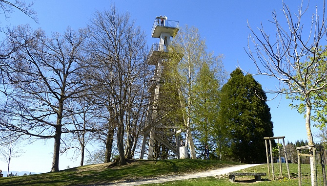 Observation tower Hochwacht on Mount Homberg