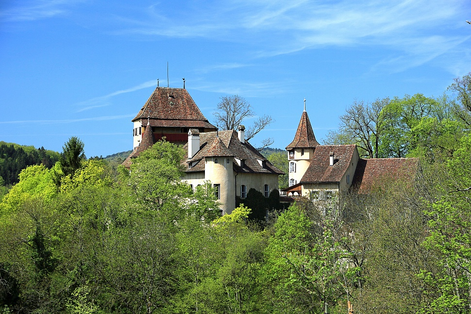 Chateau Wildenstein