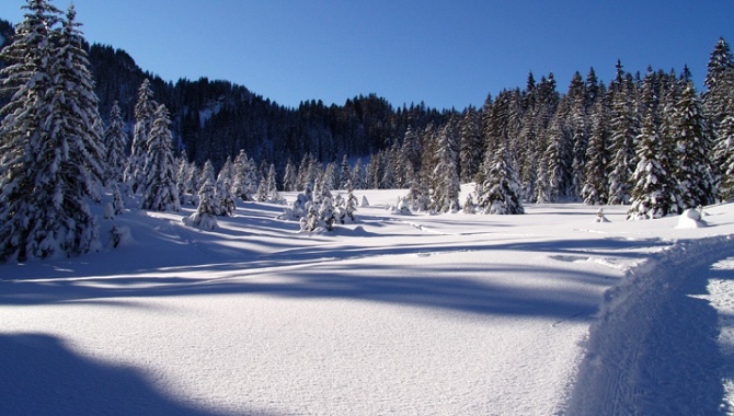 Winterlandschaft am Flumserberg.